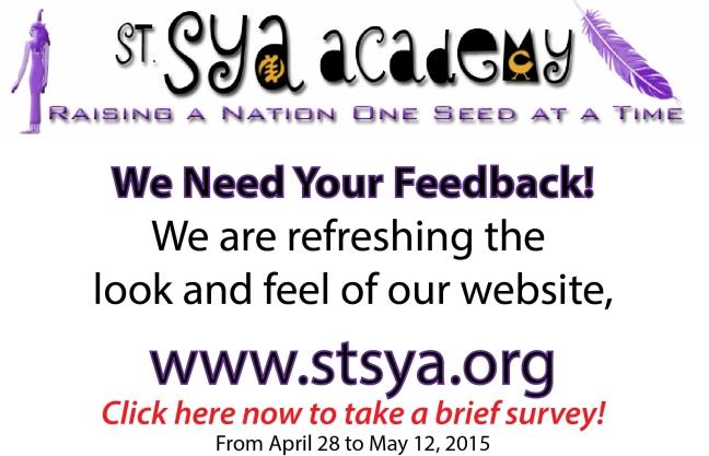 website survey 2